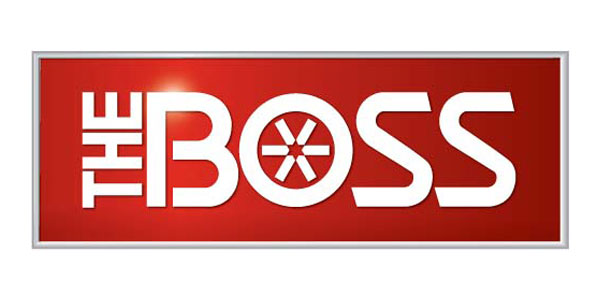 The Boss Schneeschilde und Streuer